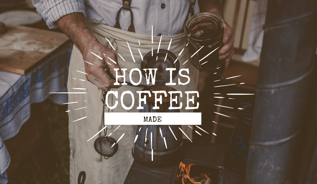 How Coffee is Made: From Ground to Grounds